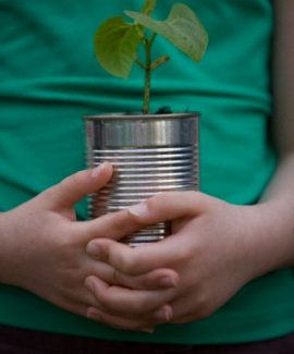 UK --- Close up of girl hands holding a plant --- Image by © Julian Winslow/ableimages/Corbis